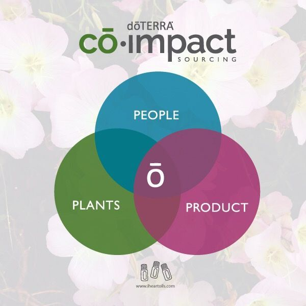 Co-impact sourcing